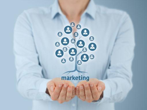 Servizio Tutoraggio Marketing