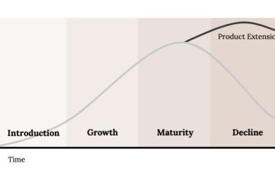 Strumenti per l'analisi strategica e la gestione del portafoglio prodotti